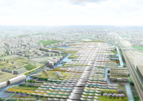 Aerial view along the primary boulevard, Expo Milan 2015 (Courtesy of Herzog & de Meuron)