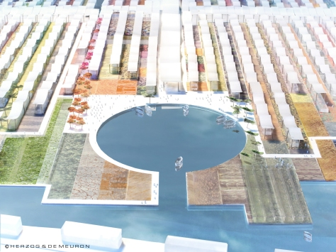 A mini harbour off the canals, Expo Milan 2015 (Courtesy of Herzog & de Meuron)