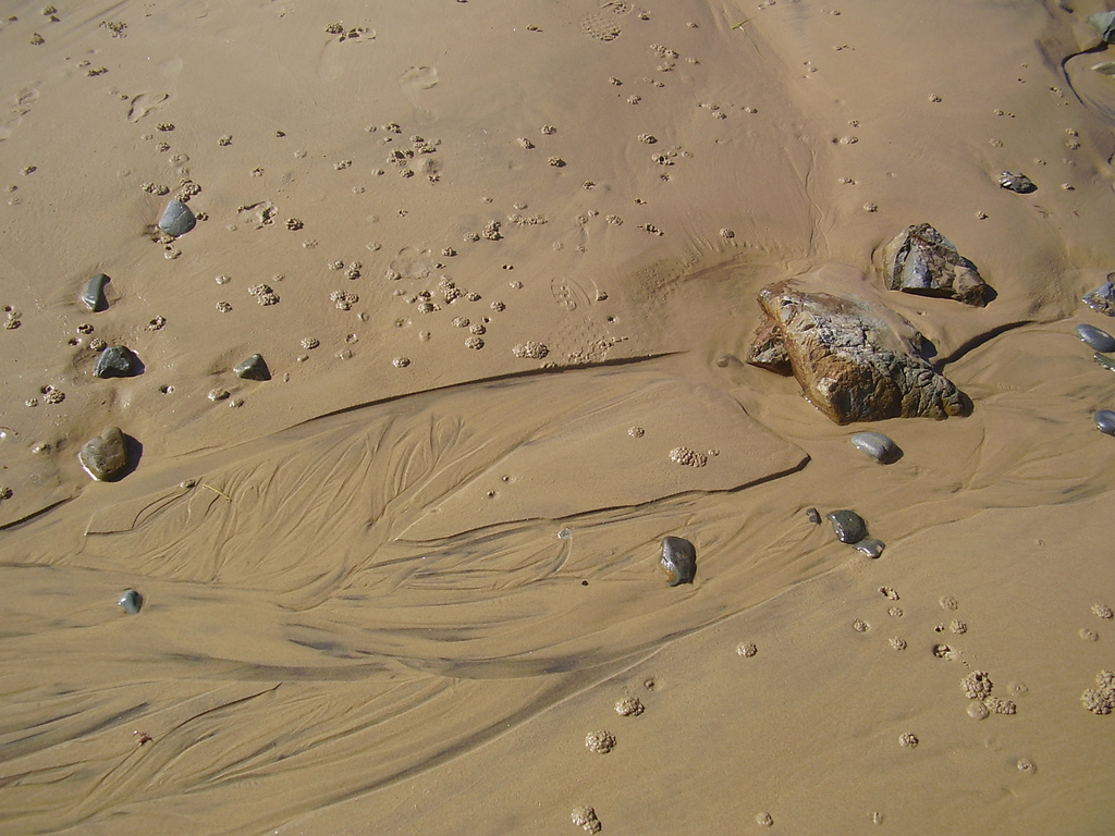 Sand patterns with crab castings, Sandy Beach, NSW, Australia.